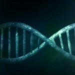 pruebas genéticas cáncer