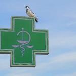 pruebas-de-adn-en-farmacias
